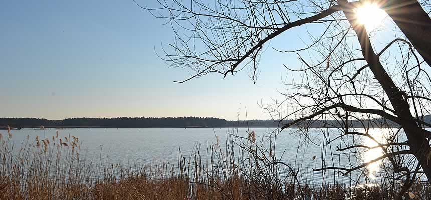 Wanderung durch das Lausitzer Seenland